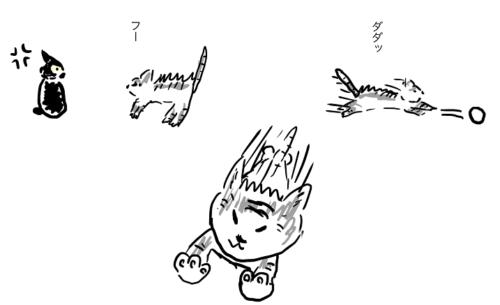 子猫は小屋から出すと本当にばたばた暴れまわります